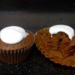 20090505_cupcakes_1
