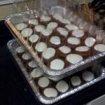 20090505_cupcakes_2